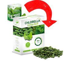 Chlorella Ginkgo Aktif 250g (Chlorella pyrenoidosa)